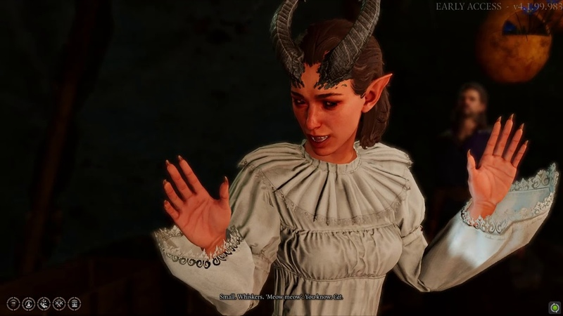 Lae'zel doesn't know what a cat is Early Access Baldur's Gate 3