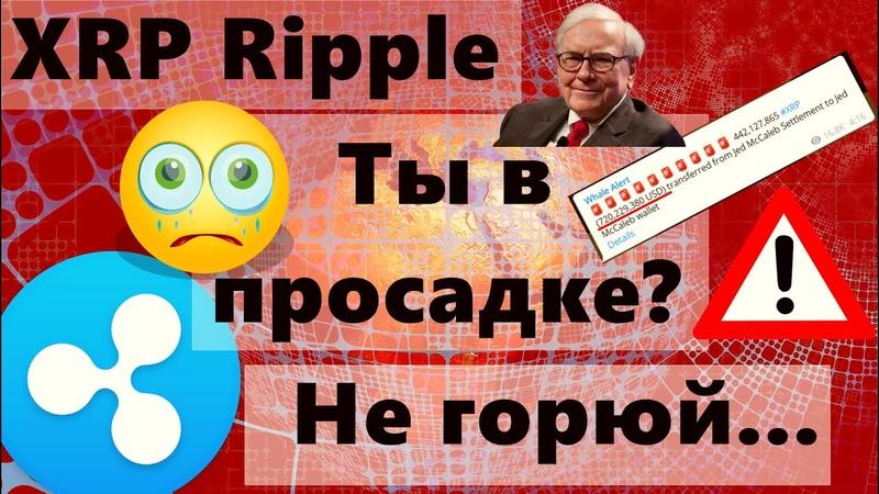 XRP Ripple Ты в просадке Не горюй порадуйся за Маккалеба Злые Дедушки и Bitcoin