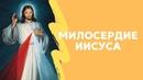 Милосердие Иисуса. Христианские проповеди онлайн.