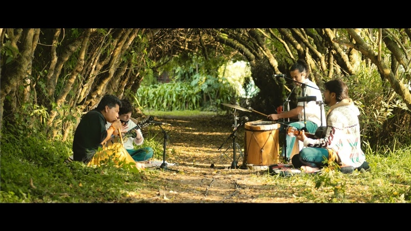 Sebastián Chávez-Tindu- Colibrí en Vivo (De Mirabai Ceiba, versión de Sebastián Chávez)
