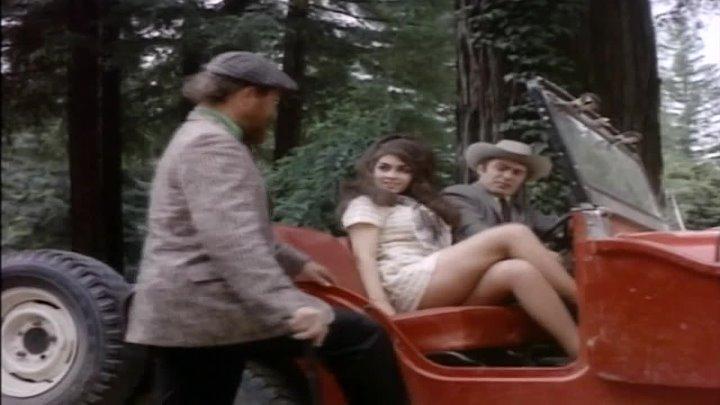 1968 Vixen