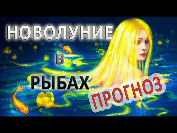 Новолуние в Рыбах и прогноз для всех знаков Зодиака с 13 03 по 12 04 2021