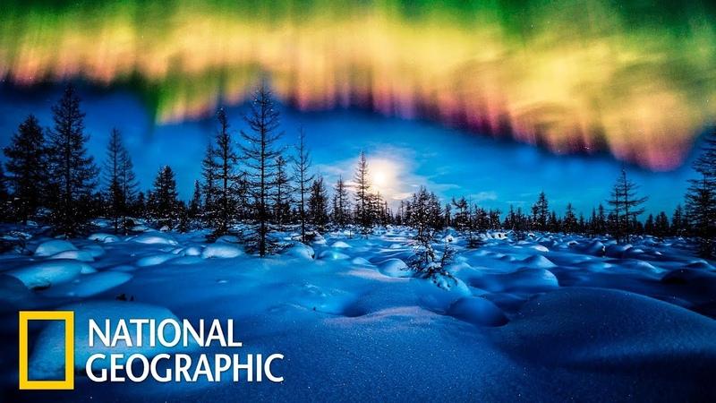 Дикая природа России Заполярье Фильм 3 из 6 National Geographic