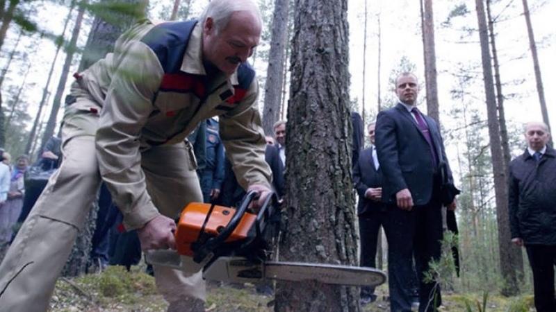 Лукашенко распорядился перейти с газа на дрова