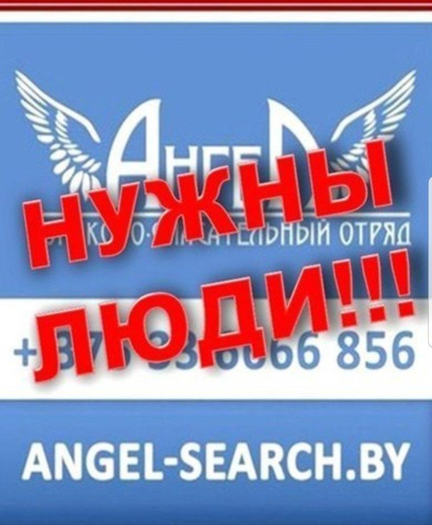 В деревне Збироги Брестского района в лесу потерялся 7-летний ребёнок (найден, с ним всё ок)