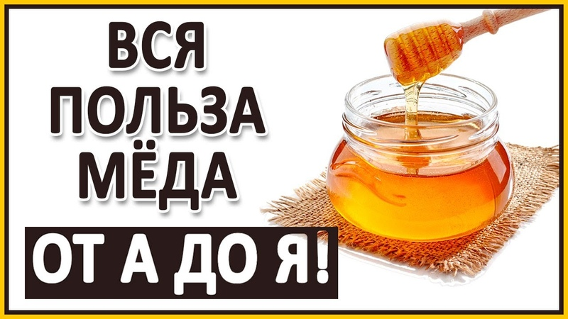 МЕД от А до Я! Самый полезный мёд. Всё о мёде Хранение, нагрев, кариес, мера, качество.