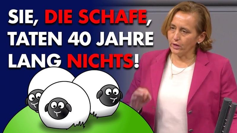 Sie die Schafe taten 40 Jahre lang nichts Beatrix von Storch AfD Fraktion im Bundestag