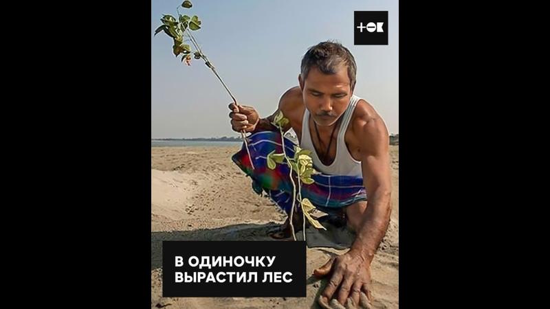 40 лет озеленяет остров