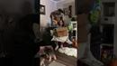 Семья делает маме необычный рождественский подарок ViralHog