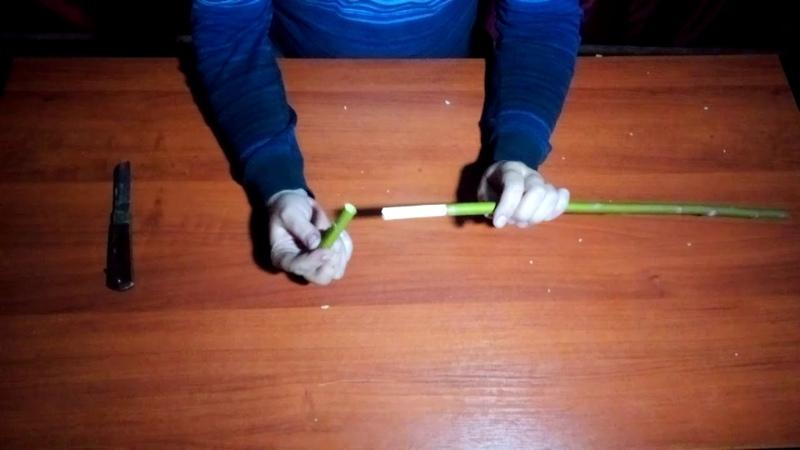 Мастер класс по изготовлению деревянного свистка