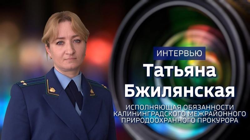 Интервью с и.о Калининградского межрайонного природоохранного прокурора
