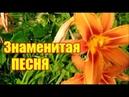 Знаменитая Песня ГДЕ ЭТА УЛИЦА, ГДЕ ЭТОТ ДОМ Best Song @Vinnitsa