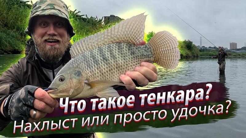 Что такое ТЕНКАРА Как и где ловить тенкара Оснастка монтаж и проводка Рыбалка на Тенкара