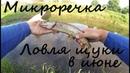 рыбалка на микро речке на спининг ловля щурей